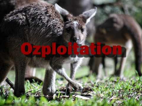 Ozploitation - Genre from Down Under